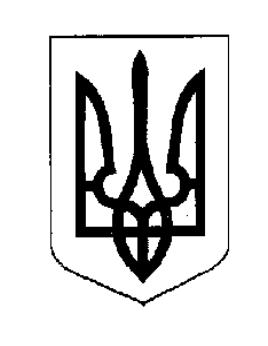 Про проведення земельних торгів з продажу земельної ділянки (вул. Бориславська)